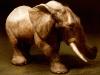 elefant_03